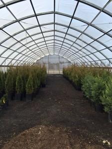 Madera Farm Greenhouse