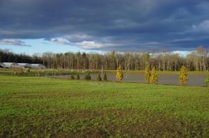 Madera Farm Nokesville, VA